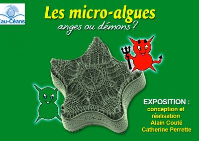 Les micro-algues, anges ou démons?