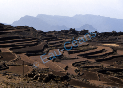 Les cultures en terrasses sont pratiquées sur des terrains en pente limités par des murets