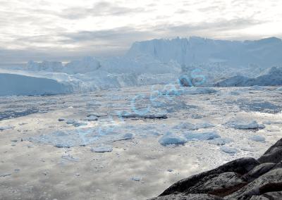 Des icebergs détachés du glacier