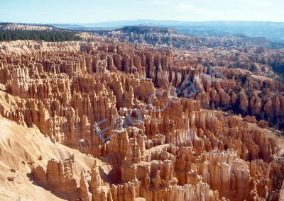 Bryce Canyon, endroit magique par ses couleurs rouge et ses colonnes dressées (= Hoodoos) simulant des hommes