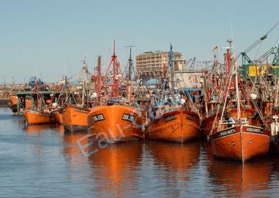Mar del plata, la Côte d'Azur argentine et son port !