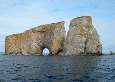 Curiosité géologique du parc National de l'Île-Bonnaventure-et-du-Rocher-Percé