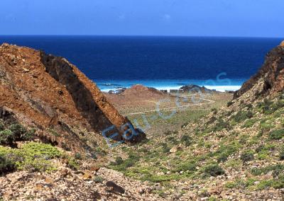 Socotra, île à 400 kilomètres des côtes du Yémen dans l'océan Indien
