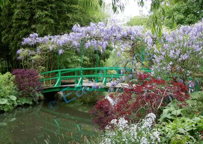 Le pont japonais peint 45 fois