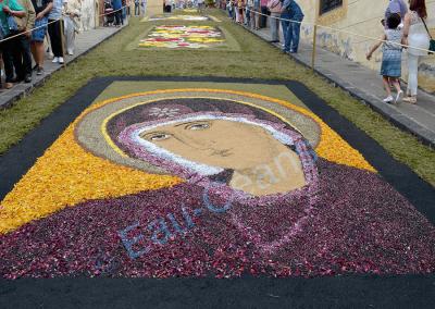 Fête du Corpus Christi, tapis de fleurs fraiches