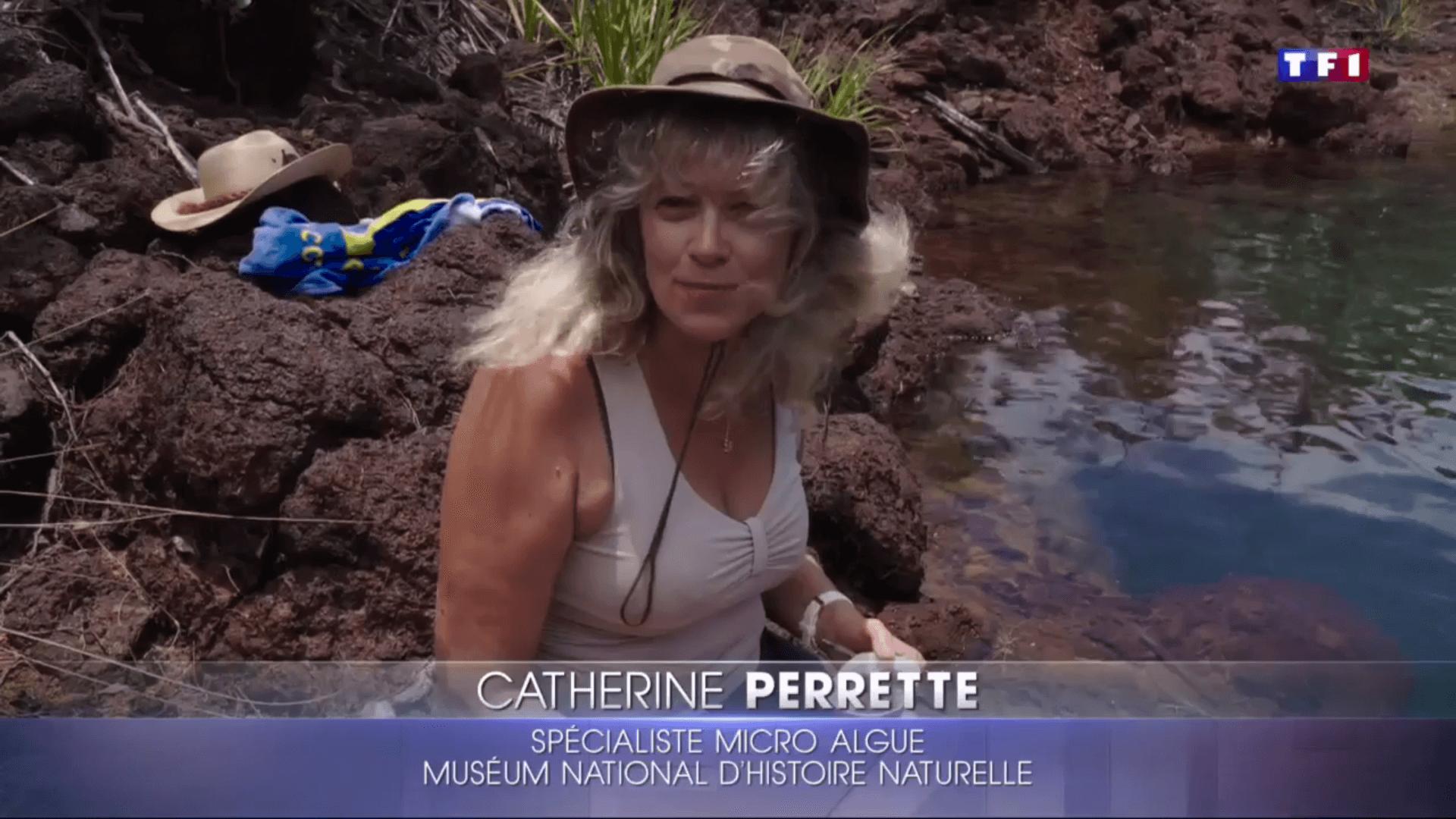 Catherine Perrette au journal télévisé de TF1